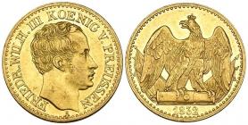 Preussen - 1832 A - Friedrich Wilhelm III. (1797 - 1840) - 1/2 Friedrich D'Or - vz-st