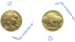 USA - 2007 - Buffalo - 50 Dollars - 1 Unze - PP
