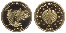Deutschland - 2013 D - Deutscher Wald - Kiefer - 20 Euro - st